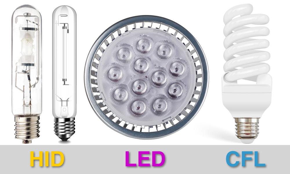 HID LED CFL (1)