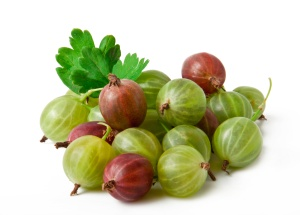 gooseberry fruit closeup isolated on white background