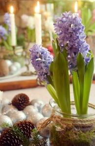 Święta Boże Narodzenie - kwiaty dekoracje